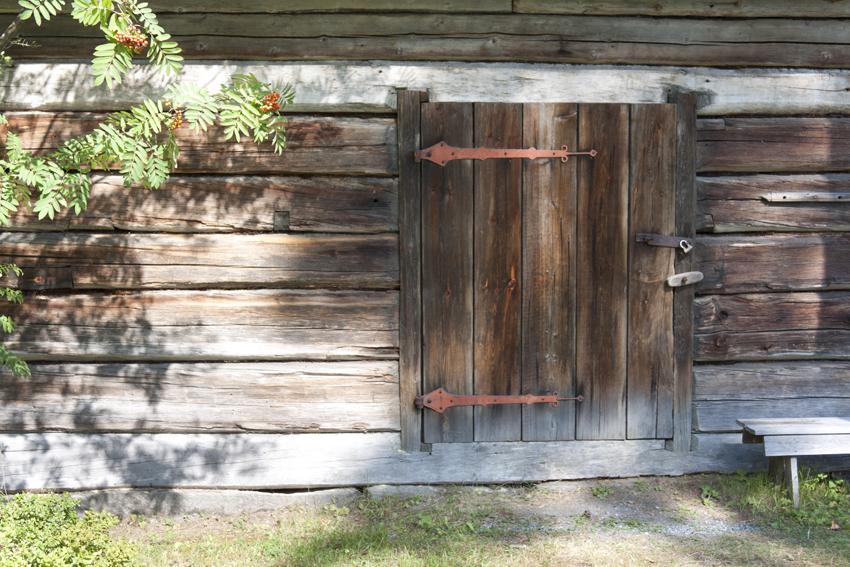 Navetan ovi pihlajan katveessa
